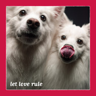 Let Love Rule Card