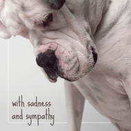 Beethoven's Sadness and Sympathy Card