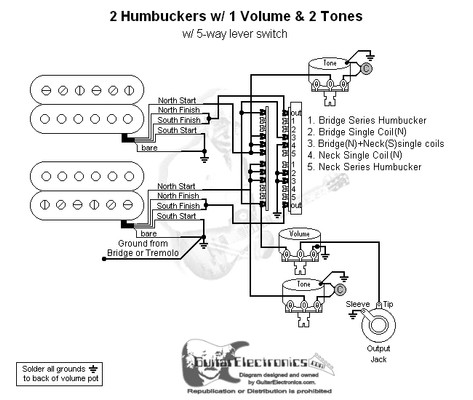 2 Humbuckers 5 Way Lever Switch 1 Volume 2 Tones 01