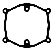 Air Cleaner Gasket - D10137537