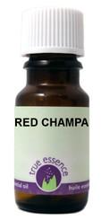 RED CHAMPA (Michelia champaca)