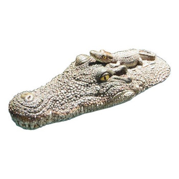 Crocodile Head Float - Out of Box