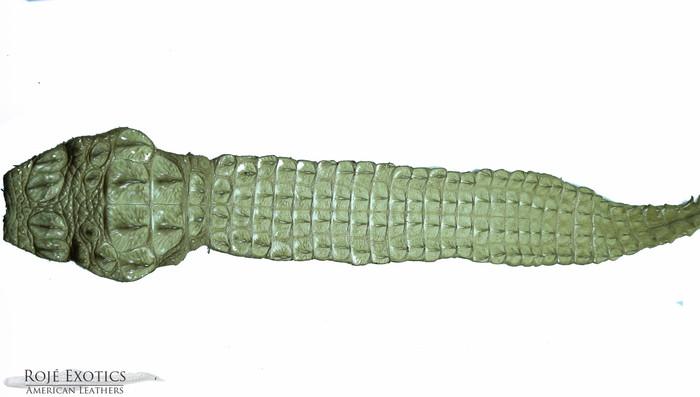 Nile Crocodile Backstrap - Beige