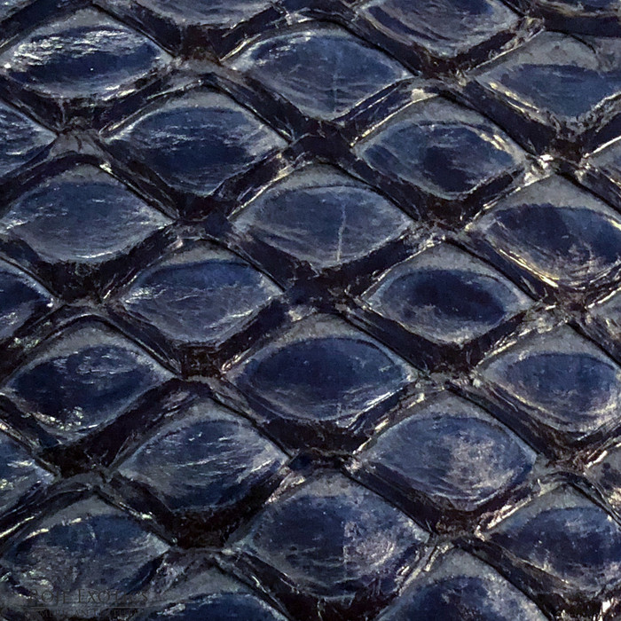 Pirarucu (Arapaima) Royal Blue Glazed-  XL