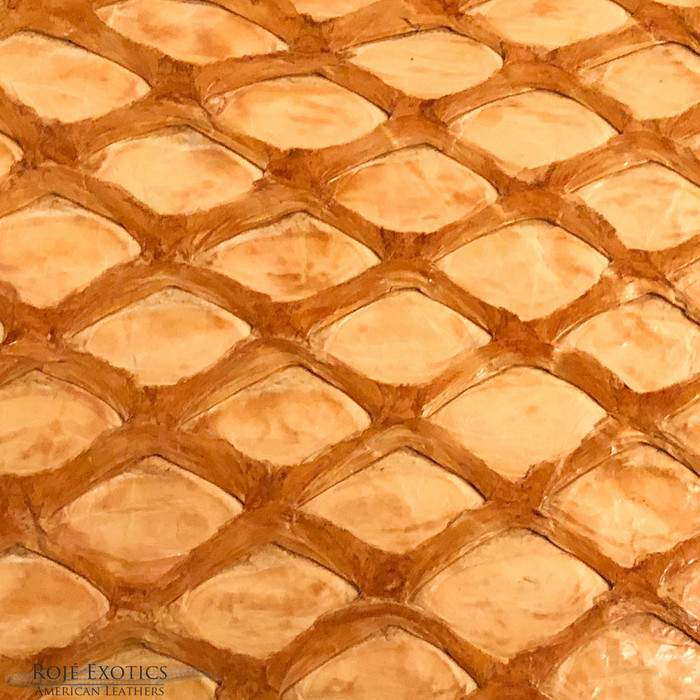 Pirarucu (Arapaima) Buttercup Glazed-  XL