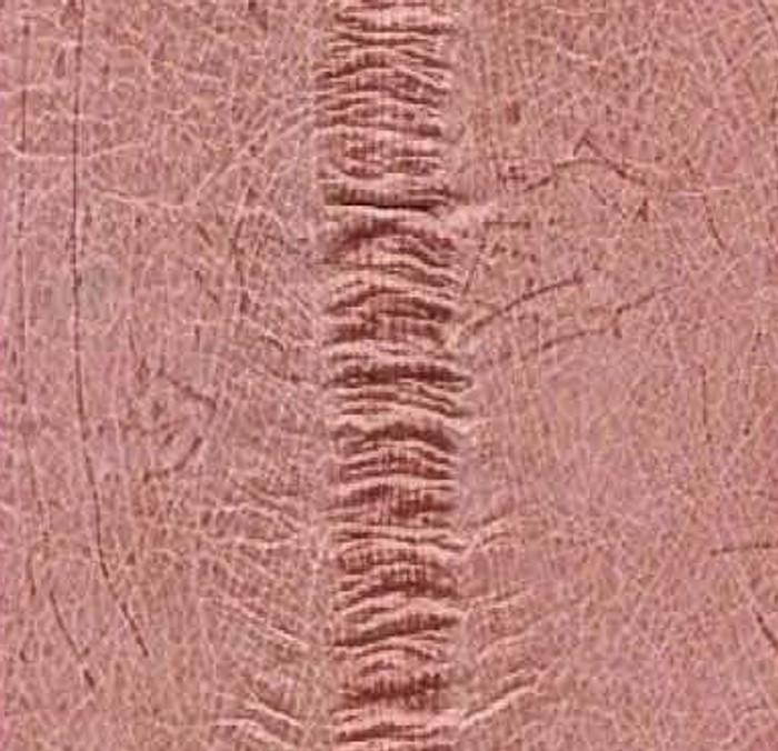 Genuine Eel Skin Panel - Pink