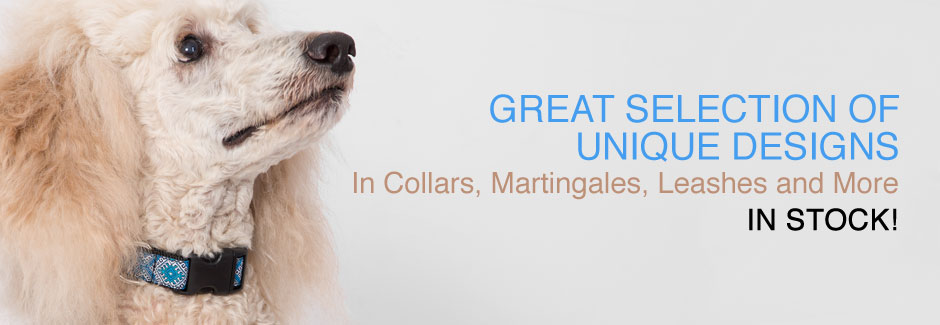 Designer Dog Collars in Unique Designs