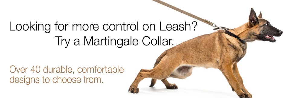 Martingale Collars for control