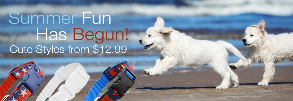 SUmmer dog Collars made in the usa