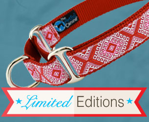 Limited Edition Dog Collar Designs