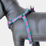 Plaid Dog harness, Lindsay Tartan, Choke-Free Step in Style Adustable Purple Nylon