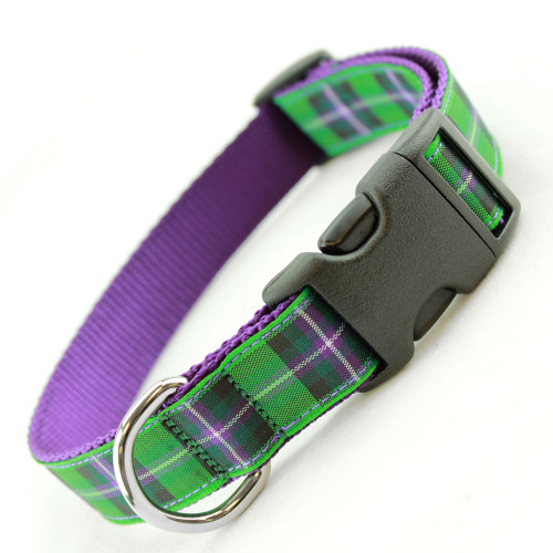 Plaid Dog Collar, Purple and Green Hibernian Tartan