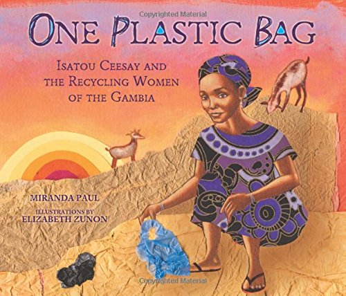 2017-books-the-gambia-one-plastic-bag.jpg
