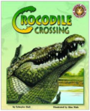 Crocodile Crossing