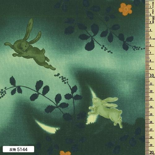 Kofu Rabbits 5144
