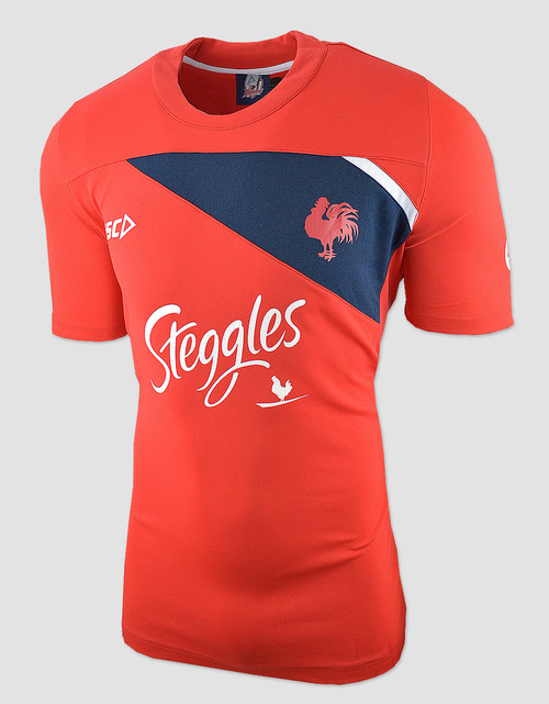 Sydney Roosters 2018 Mens Training Tee - Red/Navy