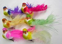 """5"""" Feather Bird Assortment w/ Clip"""