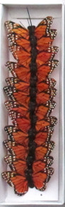 "2"" Monarch Butterfly (12-pack)"