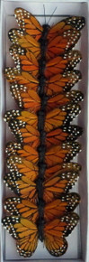"3"" Monarch Butterfly-Orange (12-pack)"