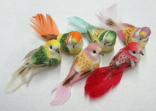 "3.5"" Feather Bird-Bright Pastel Asst (12-pack)"