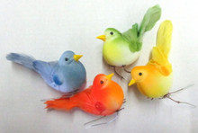 "3.5"" Chubby Feathered Bird (12-pack)"