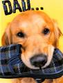 BRG15848 Birthday Card for Father - Dog w Slipper