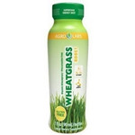 Agro Labs Wheatgrass Boost Shot (6x3Oz)