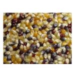 Grains Multi Colored PopCorn (1x25LB )