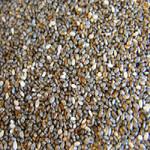 Nutiva Chia Seeds (12x6OZ )