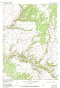7.5' Topo Map of the Allen Draw, WY Quadrangle