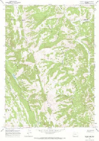 7.5' Topo Map of the Bailey Lake, WY Quadrangle