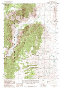 7.5' Topo Map of the Bald Peak, WY Quadrangle