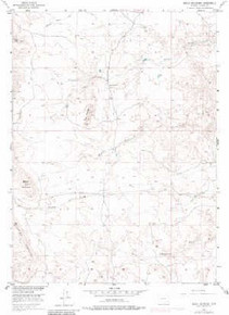 7.5' Topo Map of the Baldy Mountain, WY Quadrangle