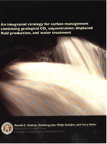 Integrated Strategy for Carbon Management Combining Geological CO2 Sequestration, Displaced Fluid Production and Water Treatment