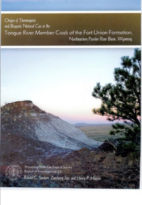 Origin of Thermogenic and Biogenic Natural Gas in the Tongue River Member Coals of the Fort Union Formation, Northeastern Powder River Basin, Wyoming (2007)