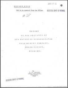 Report on the Property of the Hutchins Consolidated Gold Mining Company, Crook County, Wyoming