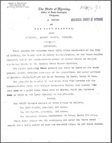 Report on the Home Placers near Keystone, Albany County, Wyoming