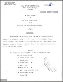 Brief Report on the Wild Goose Group near Painter, Big Horn County, Wyoming (1906)
