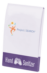 Hand Sanitizer Wipes
