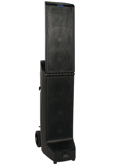 Anchor Audio Bigfoot Line Array speaker (BIG-8000)
