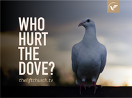 Who Hurt the Dove? (MP3)