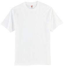Hanes® - Tagless® 100% Cotton T-Shirt w/Spirit Screen Logo - Trinity