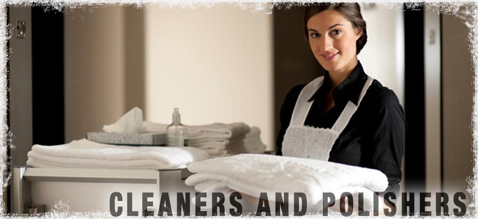 american-aerosol-category-headers-housekeepingv2.jpg