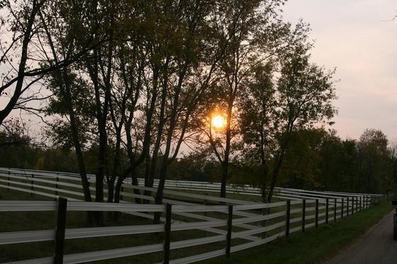 560-grace-farms-4.jpg