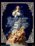 Immaculate Conception (St. Thomas Aquinas Quote) Wall Graphic
