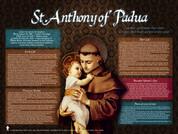 Saint Anthony of Padua Explained Poster