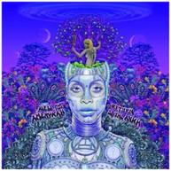 ERYKAH BADU - NEW AMERYKAH PART TWO: RETURN OF THE ANKH CD