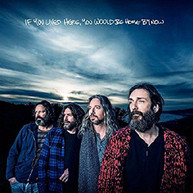 CHRIS ROBINSON BROTHERHOOD - IF YOU LIVED HERE YOU WOULD BE HOME BY NOW CD