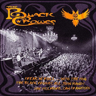 BLACK CROWES - INTO THE FOG CD