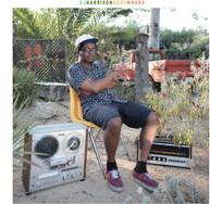 DJ HARRISON - HAZYMOODS VINYL